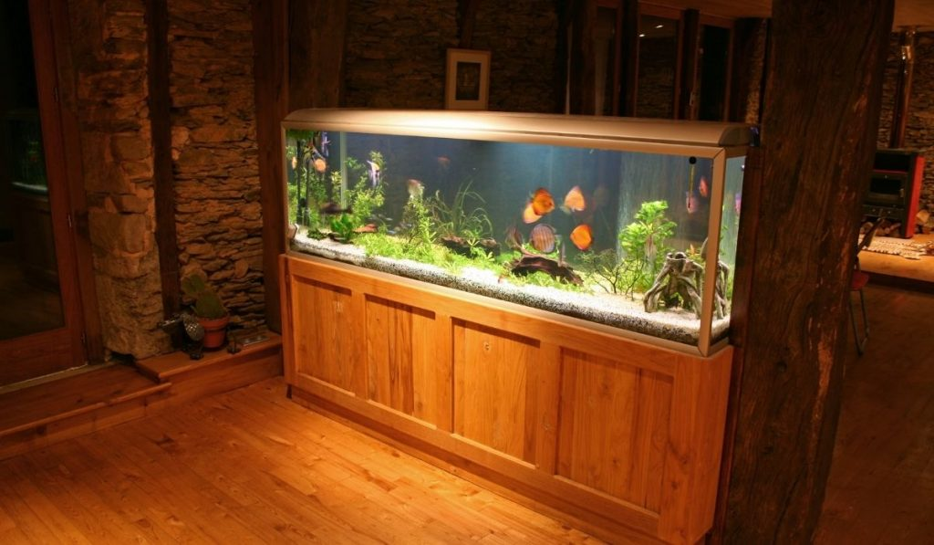 big fish tank in a penthouse